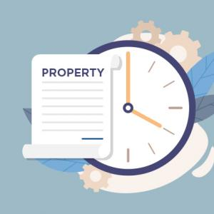 When Do Property Rights Come About?